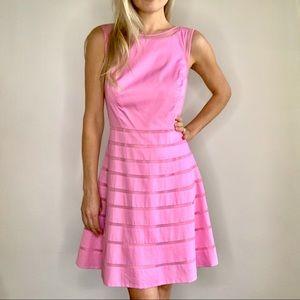 Ann Taylor Bubblegum Pink Striped Dress New w/ Tag